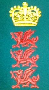 Wales Minor Counties Badge
